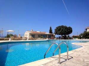 Chloraka - Paphos - pool